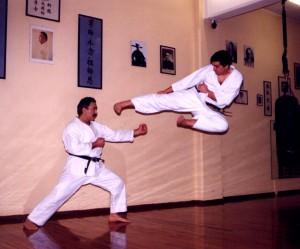 Karate yokotobi